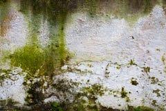 Grunge Kamienna ściana Obrazy Royalty Free