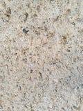 Grunge Kamiennej ściany tła tekstura Obrazy Stock