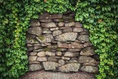 Grunge kamiennej ściany tło z pięcie rośliną Beznadziejny conce obraz stock