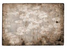 Grunge kwiatu tło ilustracji