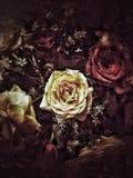 Grunge kwiatu tekstura i tło obraz royalty free
