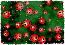 grunge ladybugs Στοκ Φωτογραφίες