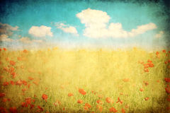 Grunge landscape. Grungy aged paper of poppy field landscape Stock Images