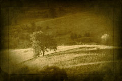 Grunge landscape Royalty Free Stock Photography