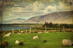 Grunge landscape connemara, west ireland Stock Image