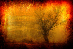 Grunge landscape - Lonely tree on dark autumn day Stock Photos