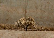 Grunge landscape Stock Image