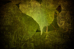 Grunge leaf. A texture with a green grunge leaf Stock Photos