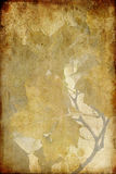 Grunge Leaf paper. A grunge background with autumn leaves Stock Images