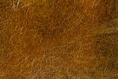 Grunge Leather Surface Texture Background Stock Image