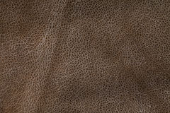 Grunge Leather Surface Texture Background Stock Images