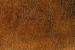 Grunge Leather Surface Texture Background Stock Photography
