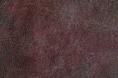 Grunge Leather Surface Texture Background Royalty Free Stock Image