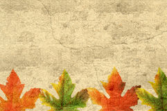 Grunge Leaves royalty free stock images