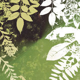 Grunge Leaves Silhouette Royalty Free Stock Photo