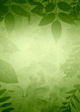 Grunge Leaves Silhouette Stock Photo