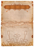 Grunge letterhead. With space for text and floral design elements stock illustration