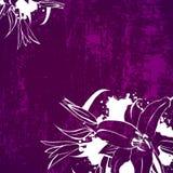 Grunge Lily Flower Background Foto de archivo libre de regalías