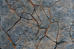 Grunge limestone surface texture Royalty Free Stock Photos
