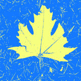 Grunge Maple Leaf - Black color. Autumn print vector illustration.  Royalty Free Stock Images