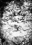 Grunge marble Stock Image