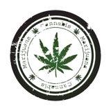 grunge marihuany znaczek Zdjęcie Stock