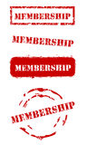 Grunge Membership Stamps Royalty Free Stock Photo
