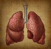 Grunge Menschen-Lungen Stockbild