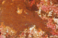 Grunge metal. A rusty metal with faded paint Stock Image