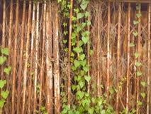 Grunge metal door home Royalty Free Stock Photo