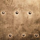Grunge metalu złocisty brown talerz nituje śruby tła teksturę fotografia stock