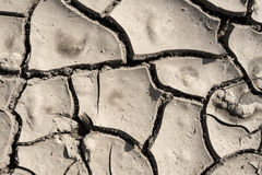 Grunge mud cracks texture Stock Photography
