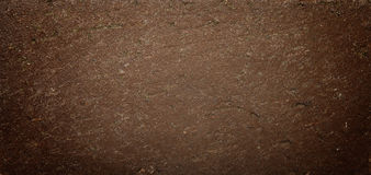 Grunge Natural Texture Vignette Royalty Free Stock Image