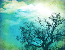 Grunge nature background Royalty Free Stock Photos
