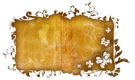 Grunge nature frame. Grunge texture frame with nature flowers, swirls and butterfly detail, clipping path for the edge is incl Stock Images
