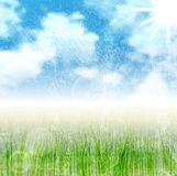 Grunge nature landscape vector background Stock Images