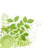 grunge nature leaf Stock Photo