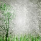 Grunge nature texture Stock Images
