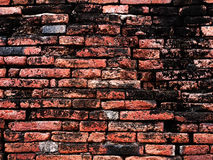 Grunge och gammal vägg Royaltyfri Foto