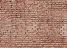Grunge old brick wall Stock Photography