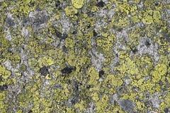 Grunge old stone background Royalty Free Stock Photo