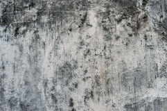 Grunge old wall black and white texture. Grunge wall texture. White old wall with black sooty spots and fungi, urban texture stock photos