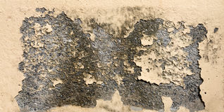 Grunge old yellow paint cement wall Royalty Free Stock Photography