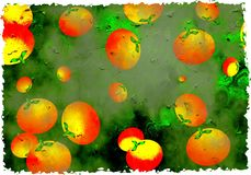 Grunge oranges. Artistic dirt stained grunge textured organic parchment background with oranges Royalty Free Stock Photo