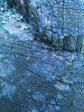Grunge oxidado do teste padrão de madeira da textura Fotos de Stock