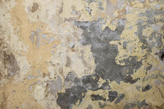 Grunge painted wall with place for copyspace Royalty Free Stock Image