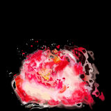Grunge painting flowers. Stock Photos