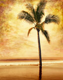 Grunge Palm Stock Image