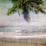 Grunge palm-6. Grunge palm background in summer style Royalty Free Stock Images