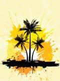 Grunge palm trees Stock Photo
